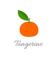 tangerine icon with title vector image