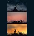 three pictures deers walking through grass vector image vector image