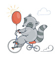 with a cheerful racoon on a bike with balloon vector image vector image