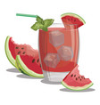a glass fresh watermelon juice vitamin vector image vector image