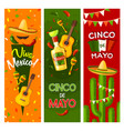 cinco de mayo mexican fiesta party greeting banner vector image vector image