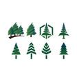 collection of pine tree logo template vector image vector image