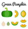 green pumpkin set 2 vector image vector image