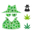 spy composition of cannabis vector image