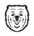 Bear mascot for the sports team print on t-shirt