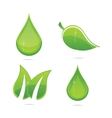 elegance eco leafs vector image vector image