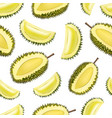 realistic 3d detailed fruit durian seamless vector image vector image