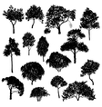 set of deciduous trees vector image vector image