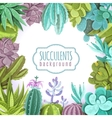 Succulents Background vector image vector image