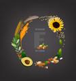 vitamin e background vector image vector image