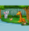 wild animal are enjoying nature by the river vector image