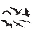 22 Seagull Silhouette Set1 vector image