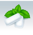 chewing gum with mint flavor vector image