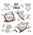 collection of cute cartoon koalas set of vector image vector image