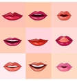 Set of Beautiful Female Lips vector image vector image