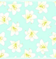 white lily on green mint background vector image vector image