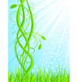 background with floral decoration vector vector image