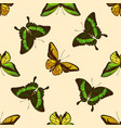 seamless pattern with hand drawn colored wallace s vector image