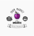 bio sticker and eco products plum web element vector image vector image