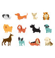 dogs - collection funny vector image
