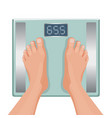 gain weight concept fat female foot on scale vector image
