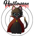 cartoon of a vampire kitten for a vector image