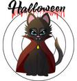 cartoon of a vampire kitten for a vector image