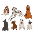 collection dog breeds icons vector image vector image