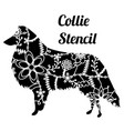 collie dog stencil vector image vector image