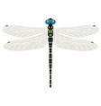 dragonfly symbol vector image vector image