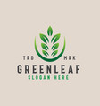 green leaf logo template with gradient color vector image