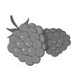 raspberry sweet fruitfruit single icon in vector image