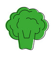 broccoli vegetable icon image vector image vector image