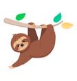 joyful cute cartoon sloth hanging on a branch vector image vector image