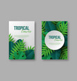 posters with exotic jungle tropical palm leaves vector image vector image