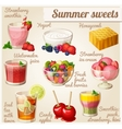 Set of food icons Summer sweets vector image vector image