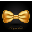 shiny gold bow vector image vector image
