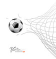 soccer ball through net isolated vector image