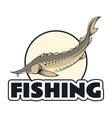 Sturgeon fishing banner vector image vector image
