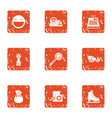 suddenness icons set grunge style vector image vector image