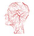 vein human head symbol icon design beautiful vector image vector image