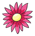 a flower vector image vector image