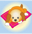 a little puppy resting on the rug vector image vector image