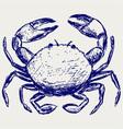 Crab sketch vector image vector image