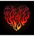 haert flame vector image