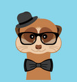 meerkat boy portrait with glasses hat and bow tie vector image vector image