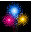 Shiny tricolor firework on the dark sky Festive vector image