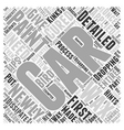 Car Detailing Tips Kinks and Hints Word Cloud vector image vector image