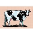 cow milk world map pattern on skin vector image