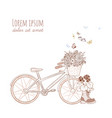 decorative garden elements flowers in bike basket vector image